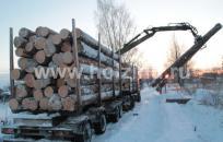 Завоз леса на площадку